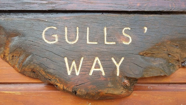 Welcome to Gulls Way